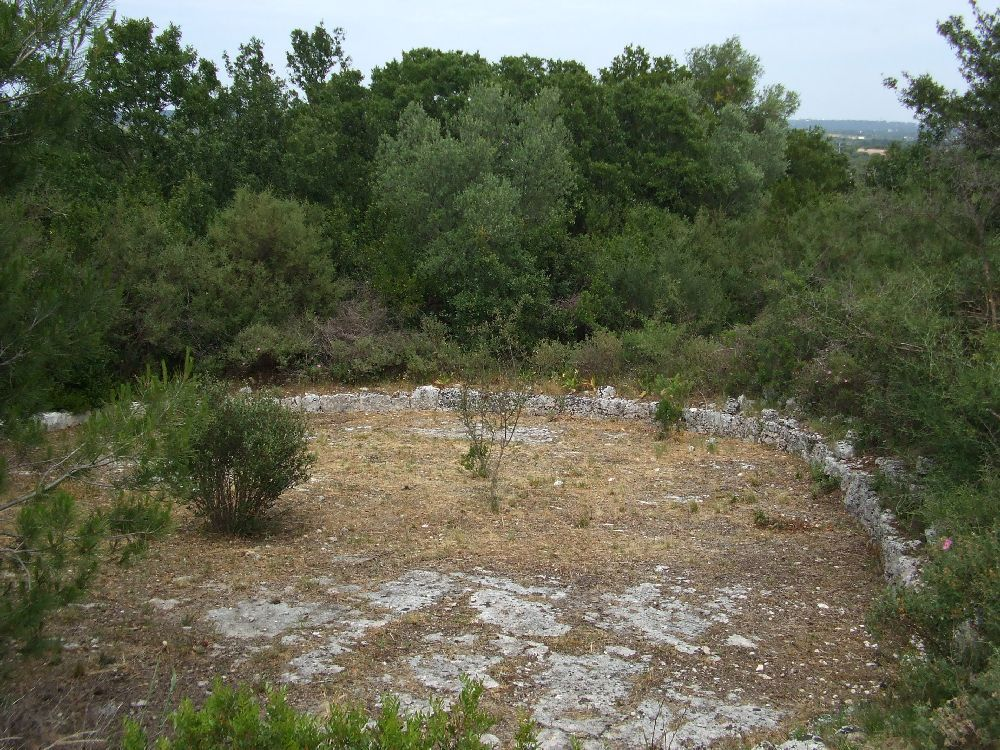Aia - vacanze - trulli - Puglia - ostuni - pascarosa - mare - locazione - rurale